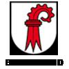 Umzug Basel Land